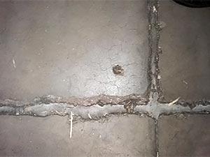 Floor Joint Spalled Edge